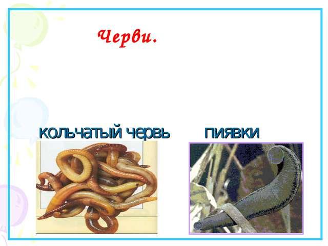 oriflame.ua 2012 детокс маска для лица
