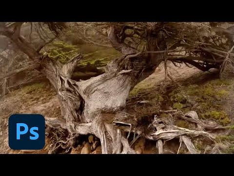 mac photoshop cc 2015 crack