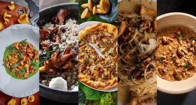 Пять простых блюд с грибами