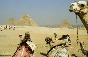 «Дело руклюдей»: ученый поставил точку вспоре опроисхождении египетских пирамид