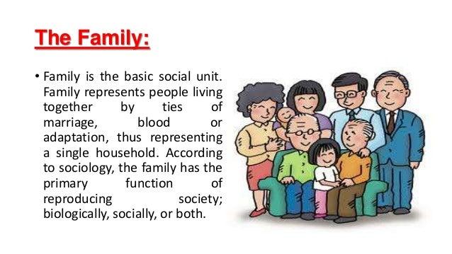 Family ties essay
