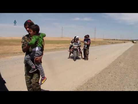 SWAT unitlite - Film et Serie en Streaming