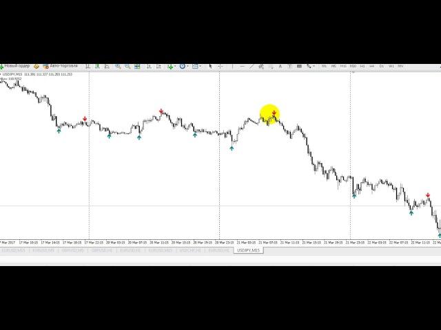 Видео урок на рынке форекс