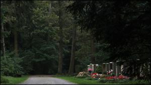 ВМюнхене осквернили могилу Бандеры