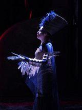 Синяя птица. Ночь