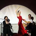Струнный квартет «Мелодион». Аркадий Резник (гитара), Алена Шульгина (танец)